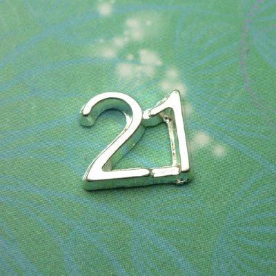 21-number-charm-big